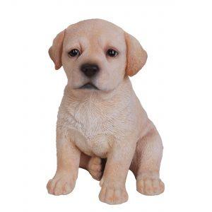 Golden Labrador Puppy Pet Pal