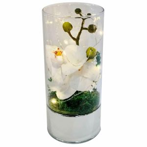 Medium Led Glass Tube Vase with Artificial White Orchids Flowers & 6 Decorative Led Lights