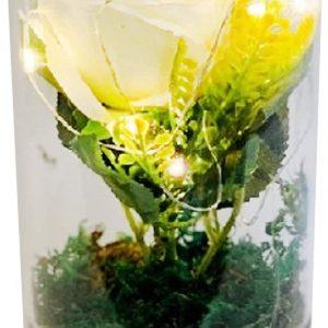 Medium Led Glass Tube Vase with Artificial White Roses Flowers & 6 Decorative Led Lights
