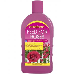Chatsworth 500ml Feed for Roses