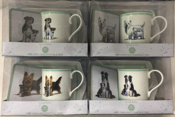 Boxed Fine Bone China Mug Coaster and Tray with Dog & Puppy Design 4 Designs to choose from (Jack Ruseell)